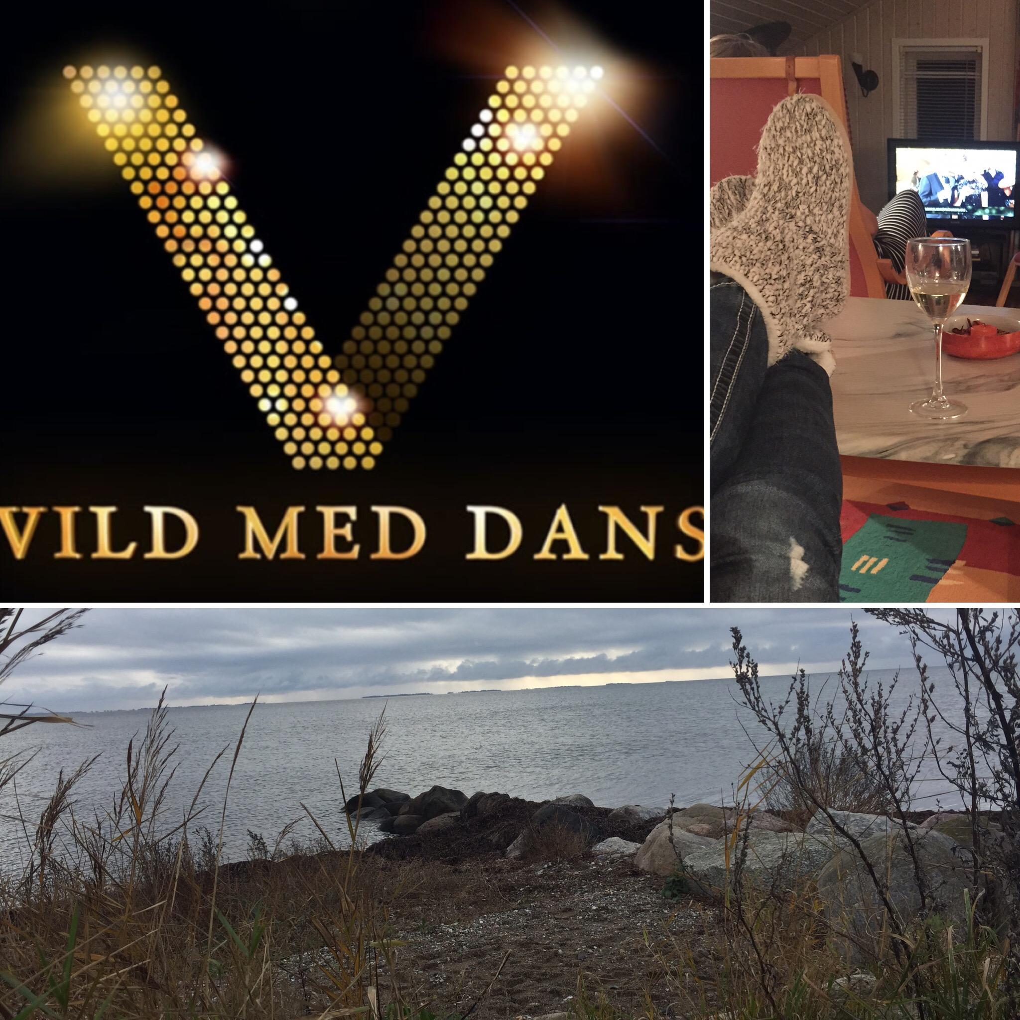 2016-45 VildmedDans